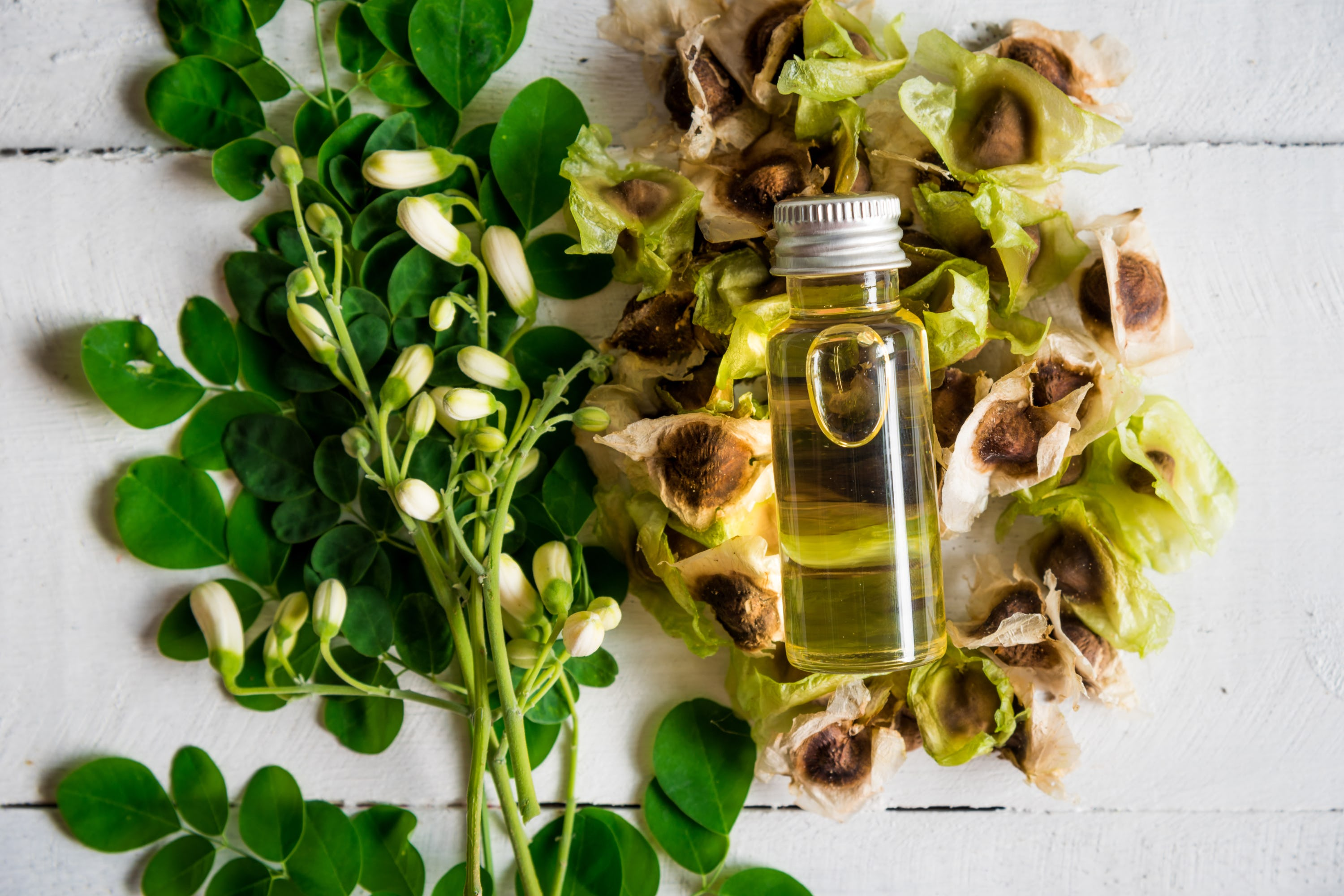 Moringa Oil and seeds